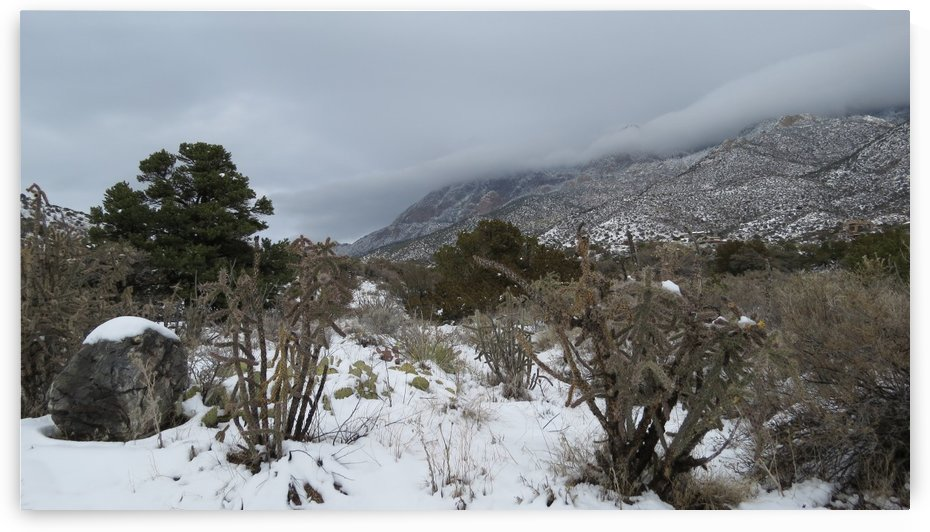 Sandia Mountains in the Snow 9 VP by Vicki Polin