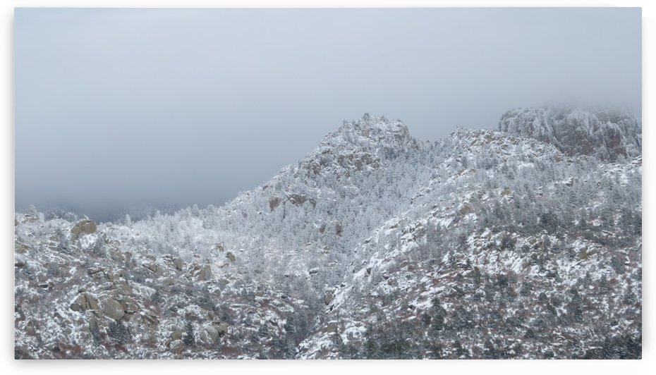 Sandia Mountains in the Snow 10 VP by Vicki Polin