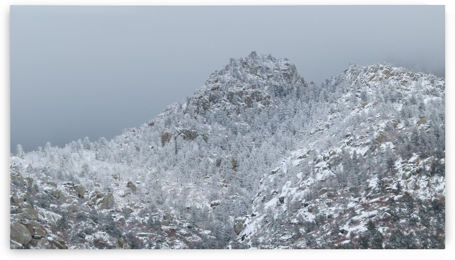 Sandia Mountains in the Snow 9VP by Vicki Polin