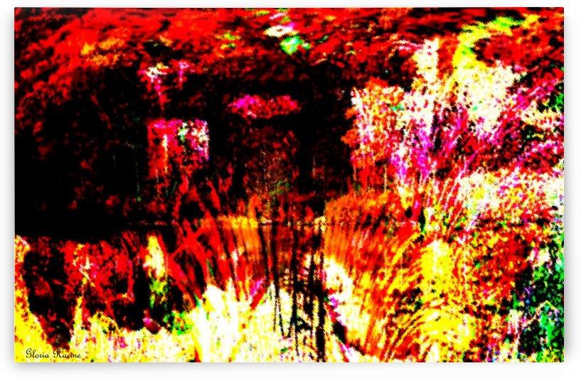 A Colorful Scene  by Gloria Racine