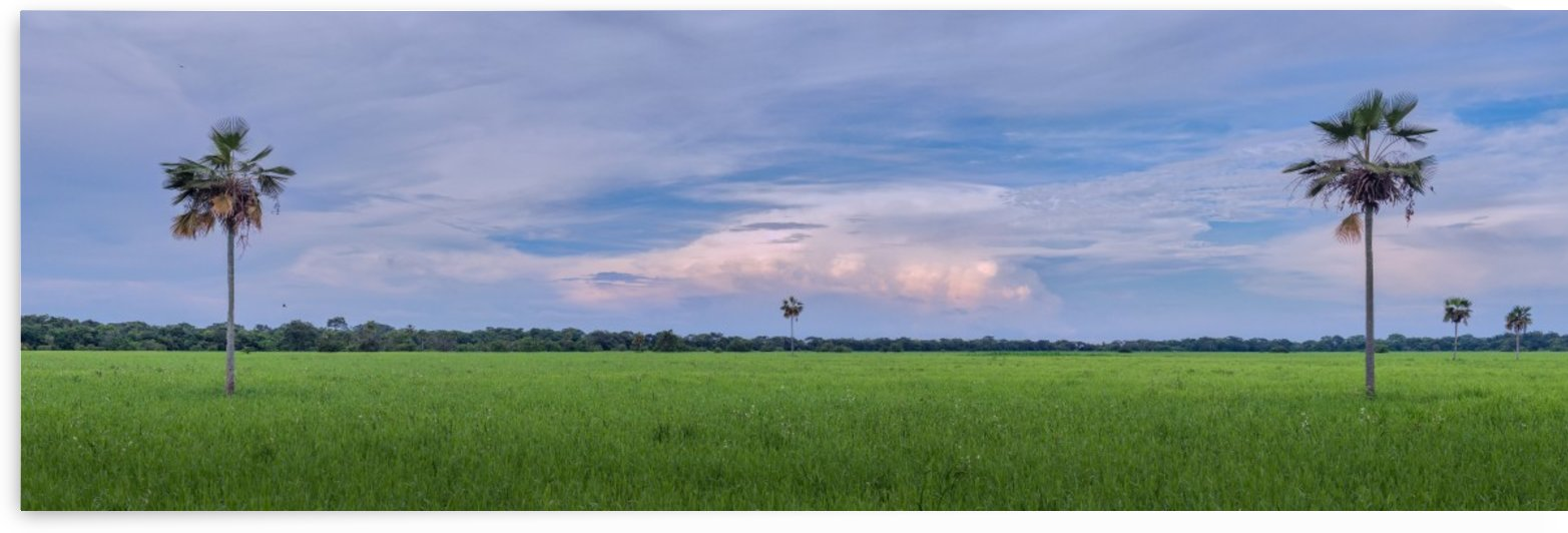 Llanos by Septapolar Luminous