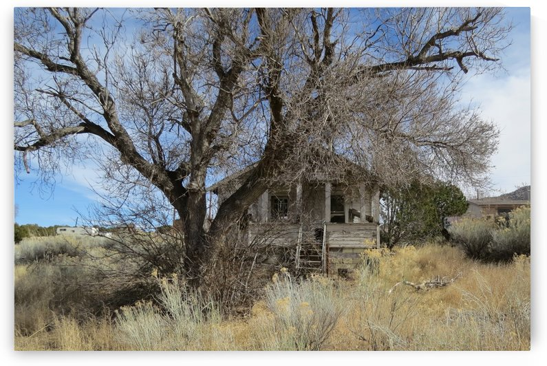 Turquoise Trail - This Old House 1VP by Vicki Polin
