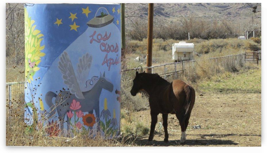 Horse - Near the Camino Real 1VP by Vicki Polin