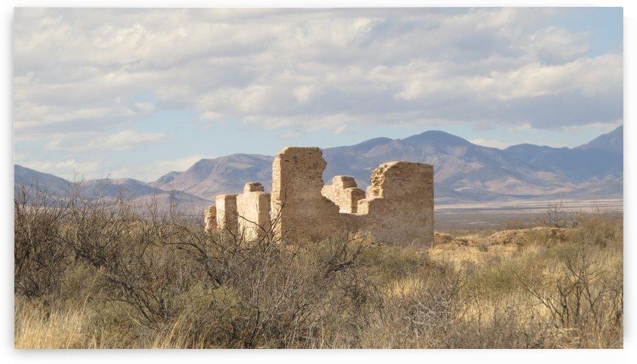 Ruins Fort Craig VP1 by Vicki Polin