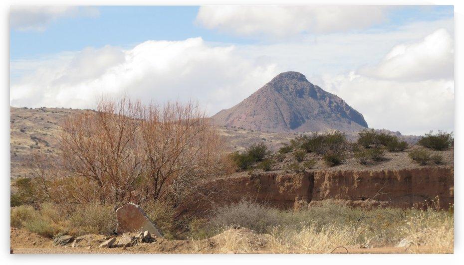 Landscape around Fort Craig VP2 by Vicki Polin