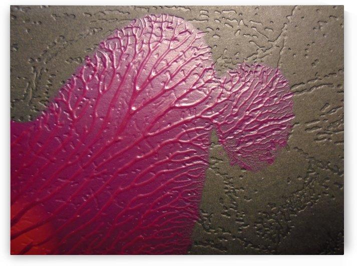 art by splash