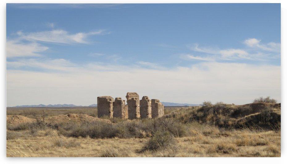 Ruins of Fort Craig VP1 by Vicki Polin