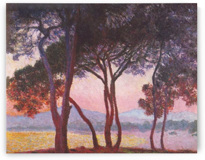 Juan les Pins by Monet by Monet