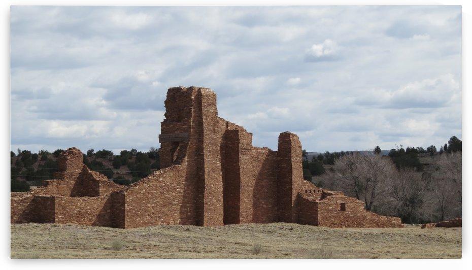 Ruins of the Abo Pueblo VP10 by Vicki Polin