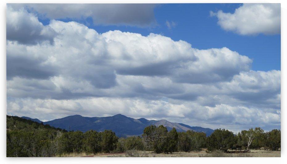 Landscape near the Abo Pueblo VP5 by Vicki Polin