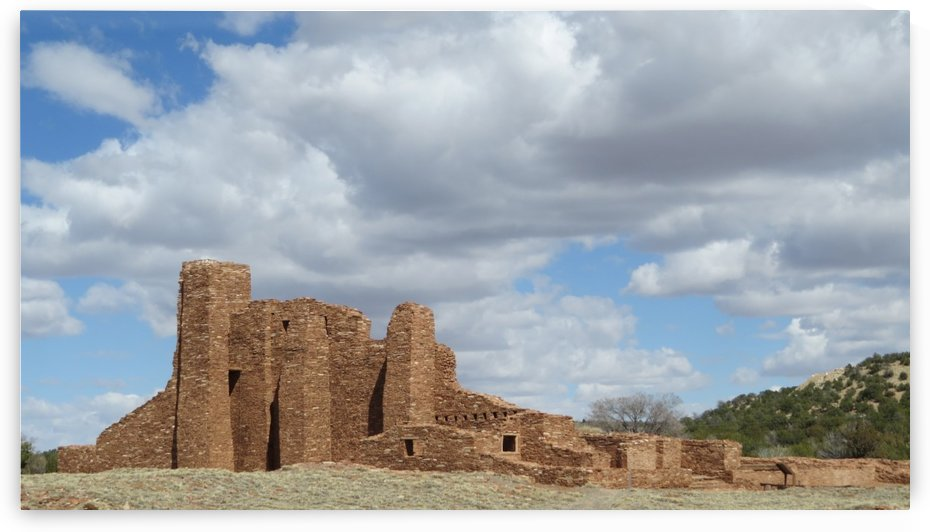 Ruins of the Abo Pueblo VP2 by Vicki Polin