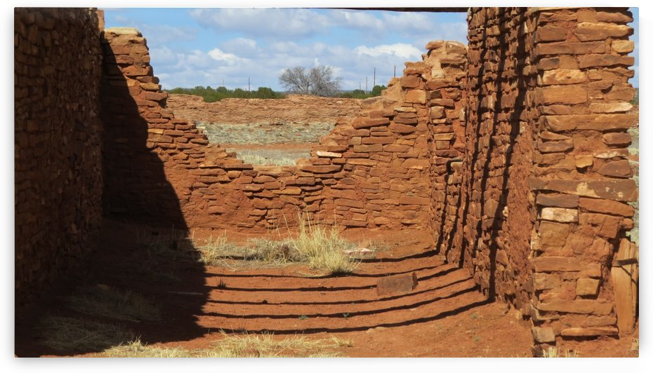 Ruins of the Abo Pueblo  VP14 by Vicki Polin
