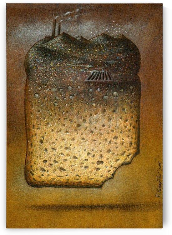 soil pollution by Pawel Kuczynski