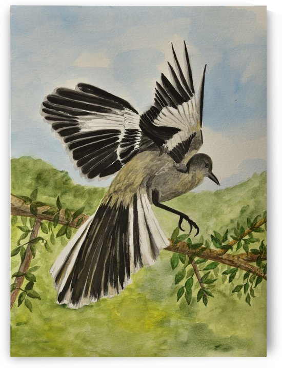 Mockingbird Landing by Linda Brody