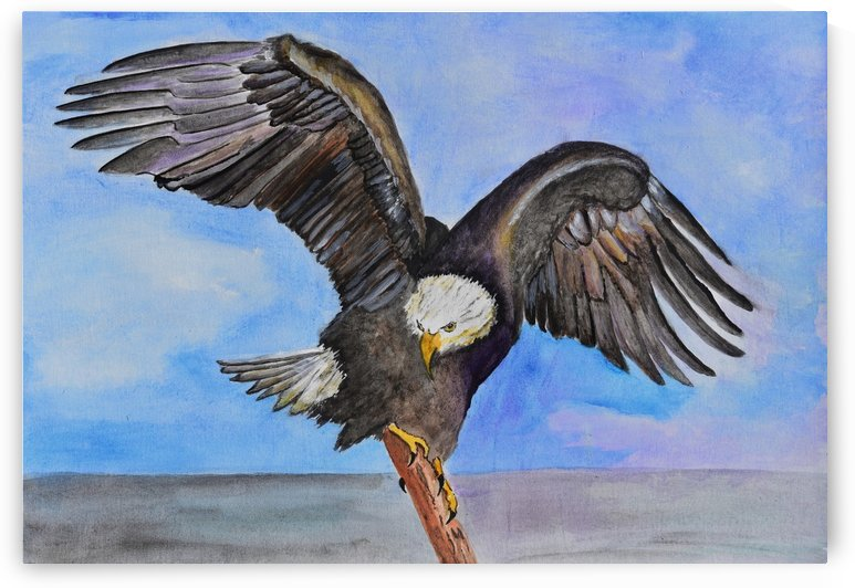 Majestic Eagle  by Linda Brody