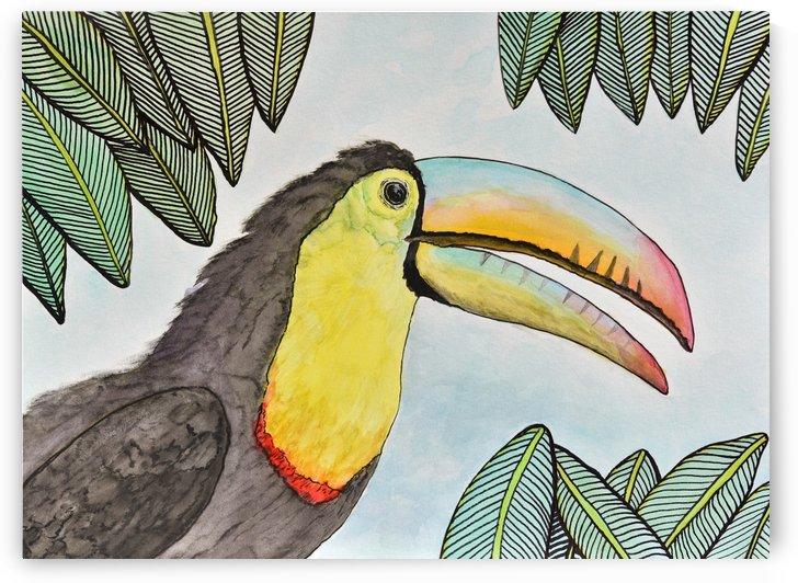 Toucan II  by Linda Brody