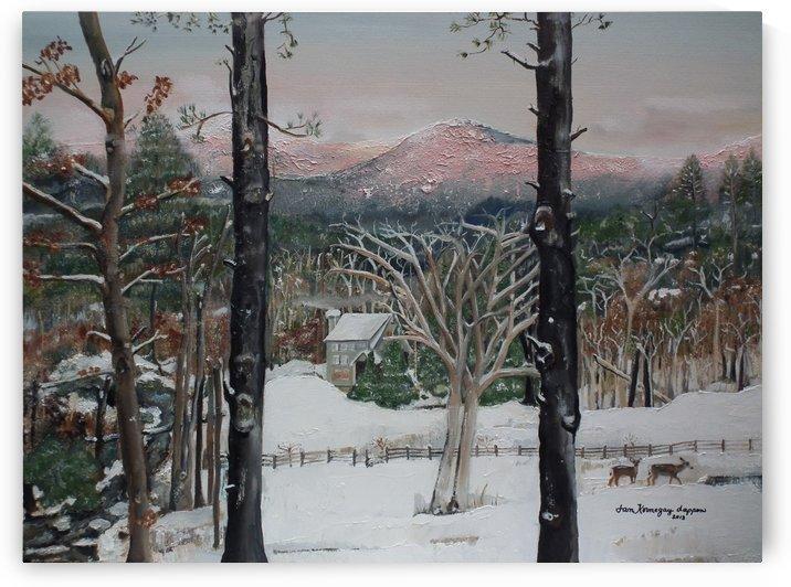 Pink Knob Mountain - Ellijay, GA- Snow by Jan Kornegay Dappen