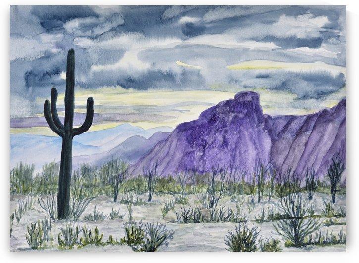 Lone Saguaro by Linda Brody