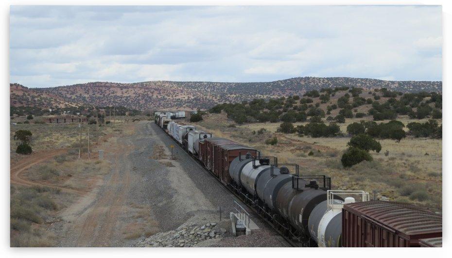 Train Outside of Mountainair, NM VP8 by Vicki Polin