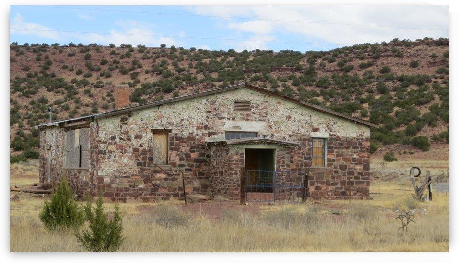 Ruins Outside of Mountainair, NM VP4 by Vicki Polin