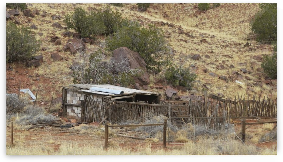 Ruins Outside of Mountainair, NM VP2 by Vicki Polin