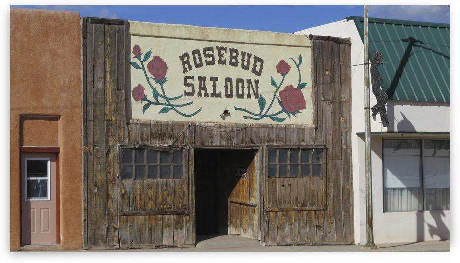 Redbud Saloon VP1 by Vicki Polin