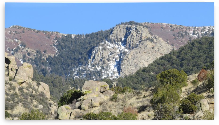 Snow in the Sandia Mountains VP11 by Vicki Polin
