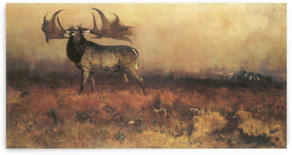A deer in the wilderness by Eugen Bracht