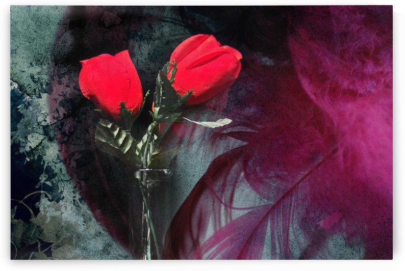 valentin 1 by dbriyul