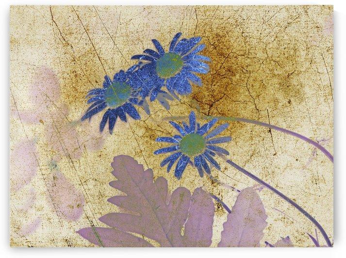 artsy floral 2 by dbriyul