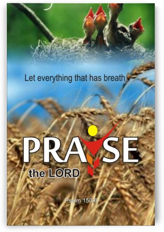 Praise God by GIDEON OJO