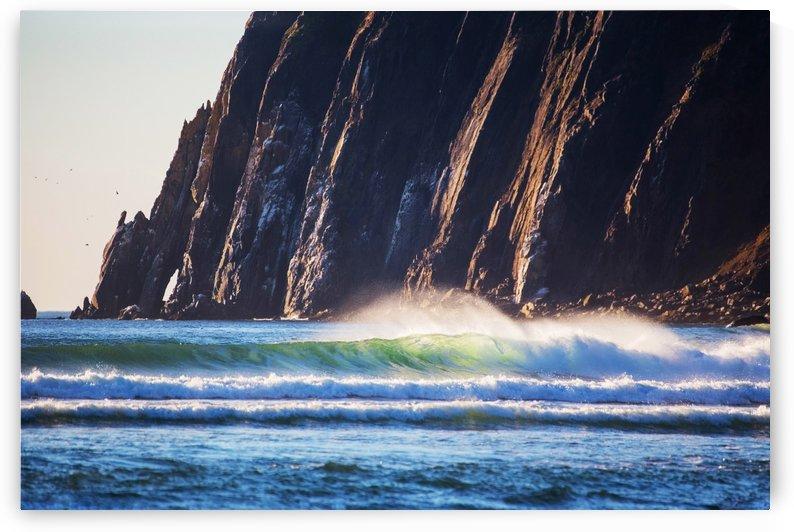 Cliffs of  Neakahnie by John Foster