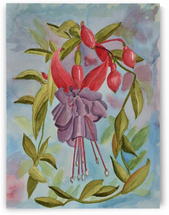 Fuschia Flower by Linda Brody