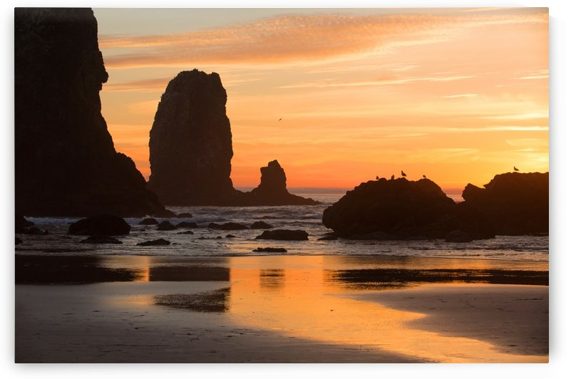 Pacific Afterglow by John Foster