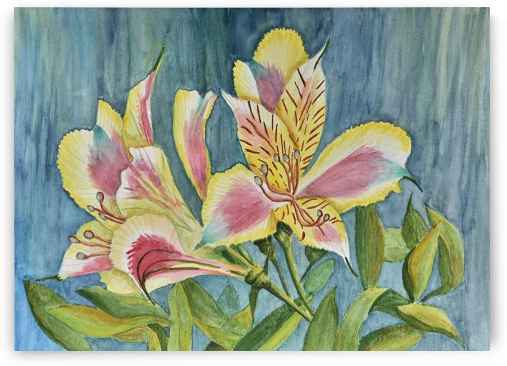 Princess Lily Watercolor by Linda Brody