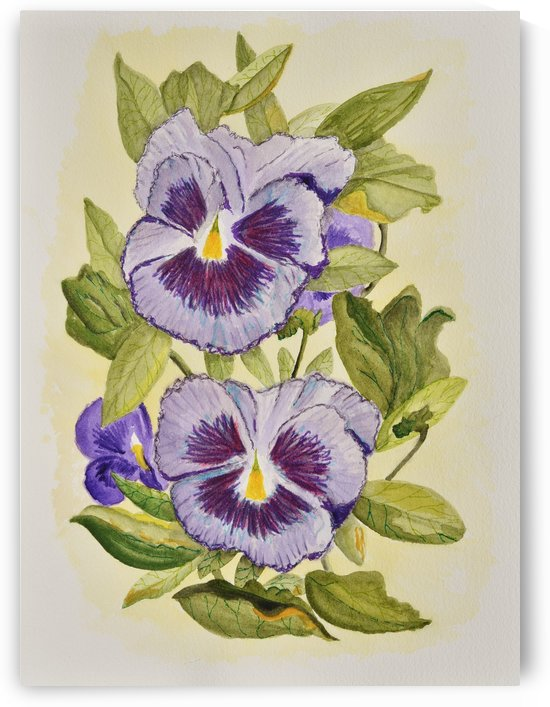 Purple Pansies by Linda Brody