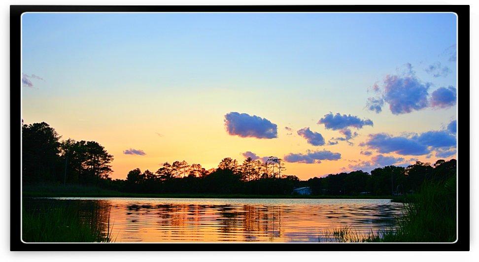 Calm Beauty by Sher Daw