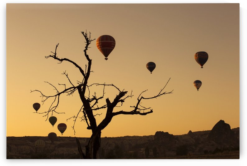 Hot air balloon flying over rock landscape at Cappadocia Turkey by MIRICA DAN-ALEXANDRU