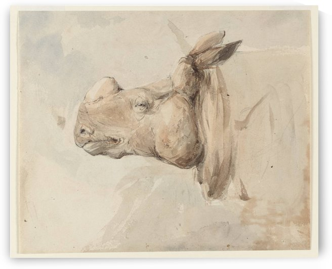 Head of a horse by Edward Angelo Goodall