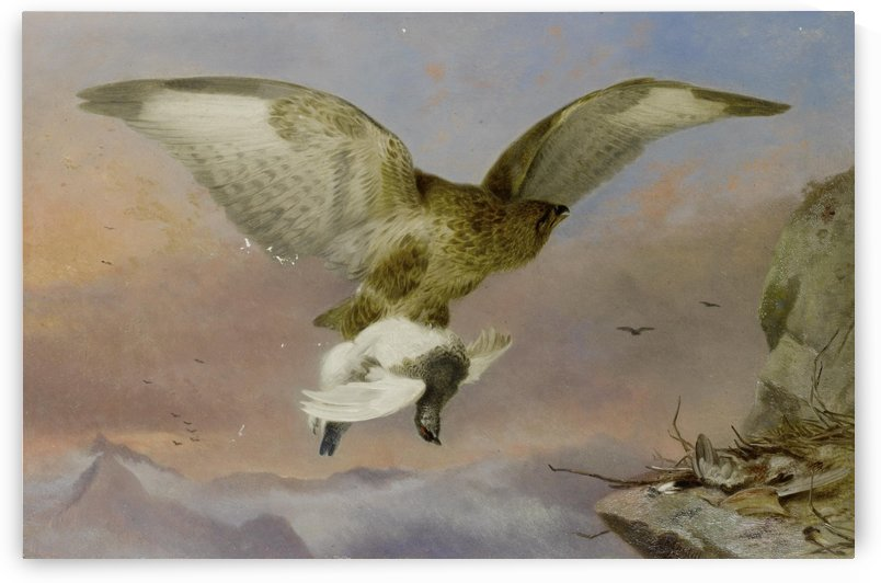 Buzzard with Ptarmigan 1876 by Richard Ansdell