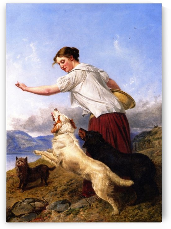 The Highland Lassie 1877 by Richard Ansdell