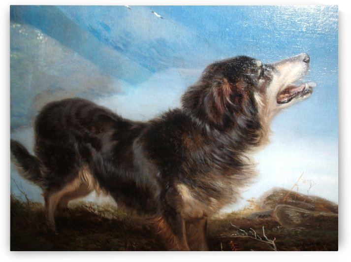 A lonely dog by Richard Ansdell
