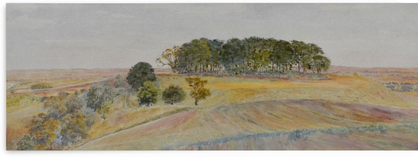 Landscape of a field in spring by George Price Boyce