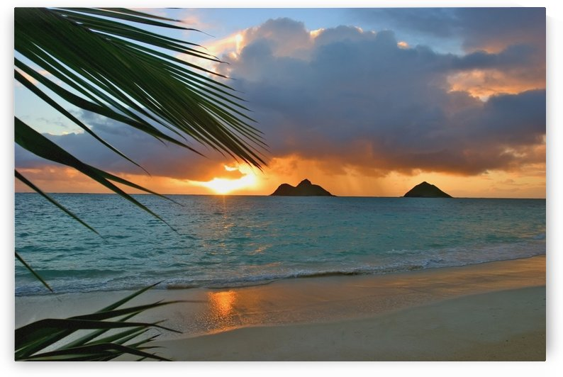 sunrise at Lanikai beach by Printscapes