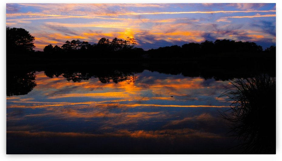 Mirrored Reflections by Sher Daw