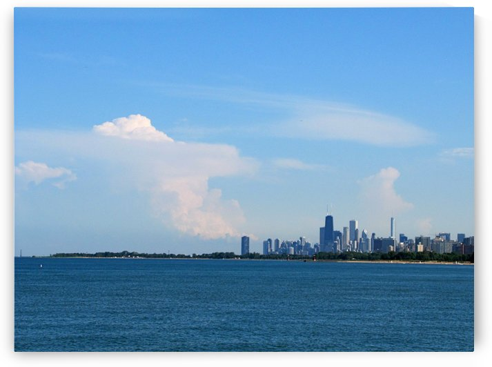 Downtown Chicago from Montrose Harbor by Vicki Polin