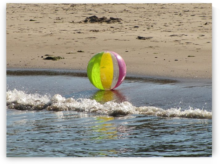 Beach Ball in Rogers Park VP1 by Vicki Polin