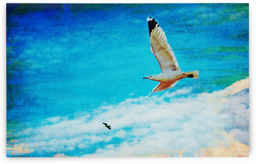Up Up and AWAY by Don  Baker