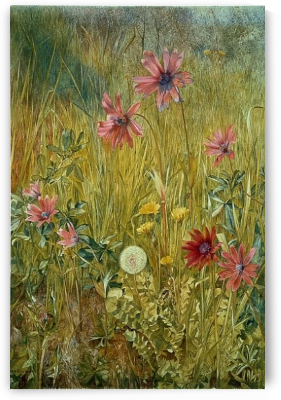 Wild flowers by Henry Roderick Newman