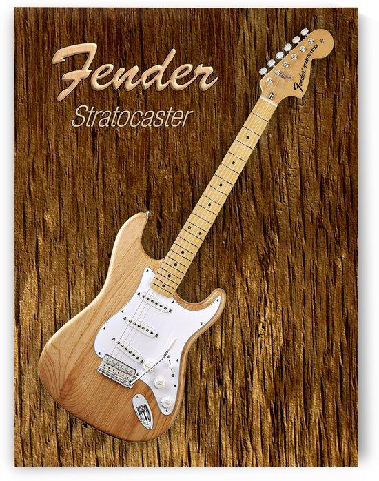 American Fender Stratocaster by shavit mason